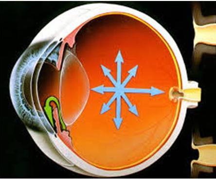 Чем опасна глаукома?